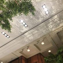 天井の葉っぱの影が揺れるところも必見。