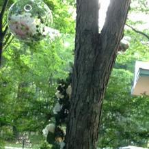 教会周辺の木に飾ってあるオーナメント