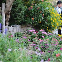 ガーデン雰囲気