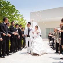 白のタキシード、ドレスです。