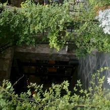 入口 緑のアーチ