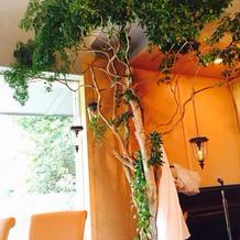 披露宴会場のメインテーブル後ろの木