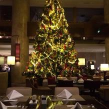 入り口クリスマスツリー
