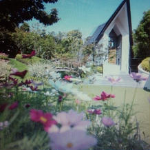 挙式会場!お庭には季節のコスモス