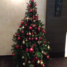 クリスマスシーズンだったのでツリーが。