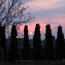 庭から見える夕陽