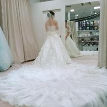 1番ベールが長いドレス