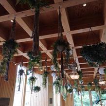 ガーデン天井