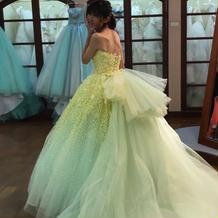 ドレスがたくさんのドレス選び
