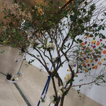 ウェルカムスペースの木