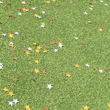 緑の芝生にスターシャワーが映えます