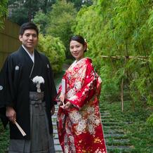 入口付近の竹藪に一目惚れしました
