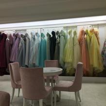 ドレスの種類が豊富