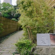 フォトスポット・竹道