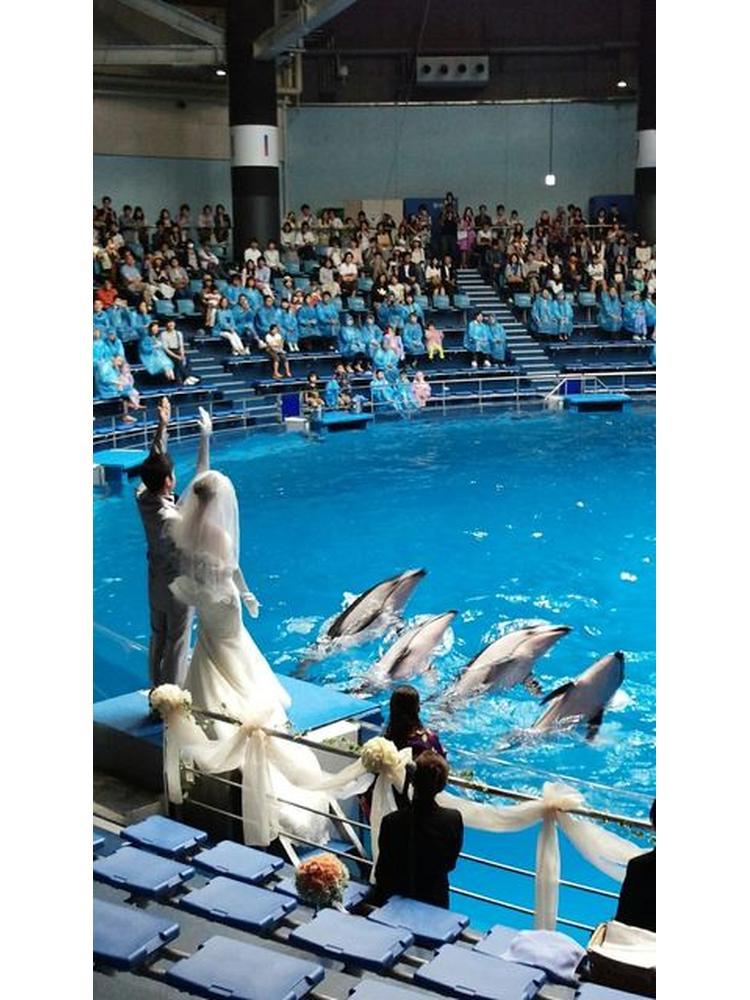 974d18d0a11be 水族館挙式でゲストみんなで楽しめた!!』by サランロドリゲスさん ...