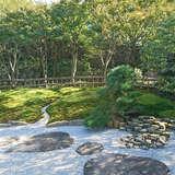 松桐の間 庭園