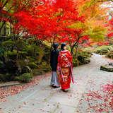 和装撮り。紅葉が美しい庭園です。