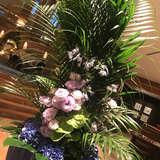 ロビー前のお花が毎回素敵です!