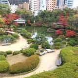 相楽園のお庭