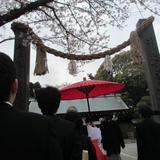 赤い傘で移動