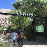 TENOHAの入口です。