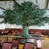 センターにあるツリー!!