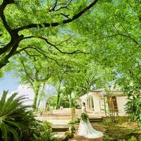 Maison de Forest