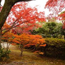 庭園内は紅葉がキレイでした