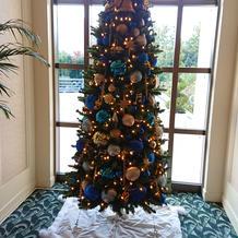 ディズニーらしいクリスマスツリー