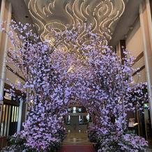ホテル内・桜の飾り付け