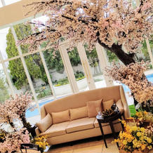期間限定の桜コーディネート