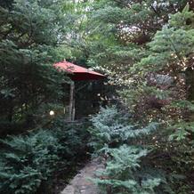 式場の敷地内にある緑の小道