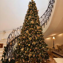 大きなクリスマスツリーがお出迎え