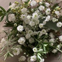 見学の際にプレゼントしていただいた花束