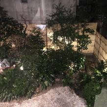 2階から見たお庭 ライトアップ