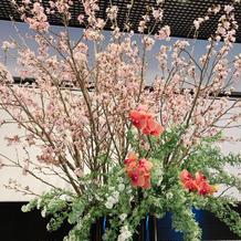 ウェルカムスペースのお花