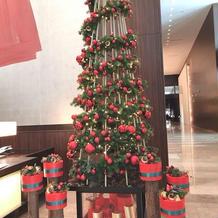 28Fロビーに出てたクリスマスツリー。