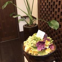 植物も至るところに飾ってあります。